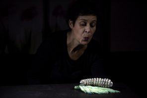 """""""Après l'Hiver"""", lumière sur le théâtre pour tout-petits"""